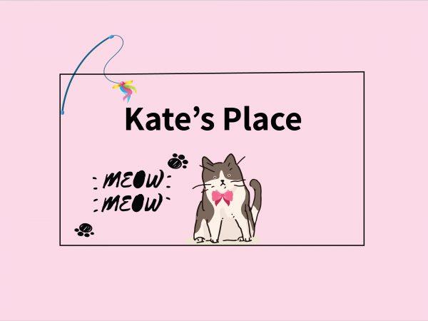 שטיחי פי וי סי לחתולים